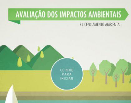 Avaliação de impactos ambientais e licenciamento ambiental
