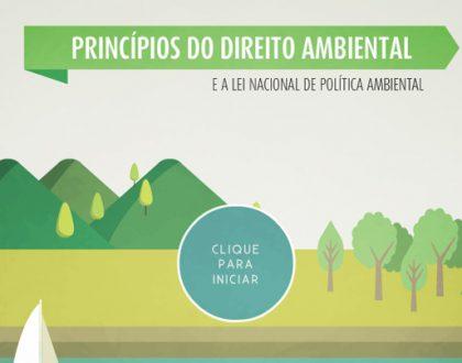 Princípios do Direito Ambiental e a lei nacional de Política Ambiental